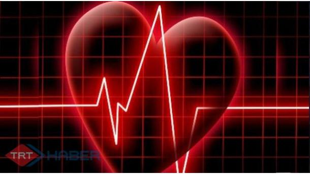 Studim-Gëzimi i tepërt dëmton zemrën