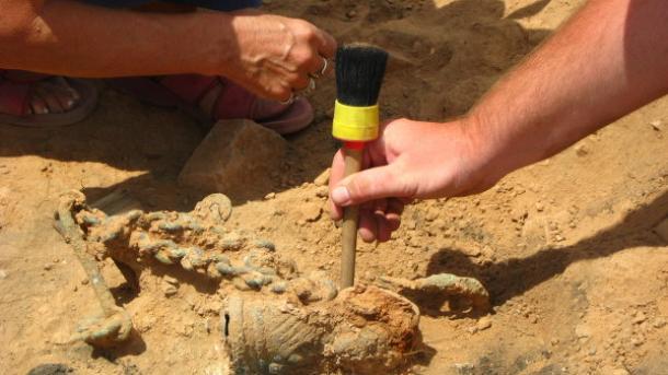 España: hallan restos de un dinosaurio que vivió hace 125 millones de años