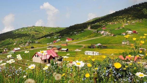 高原観光は「トンヤ」が人気の的 | TRT  日本語