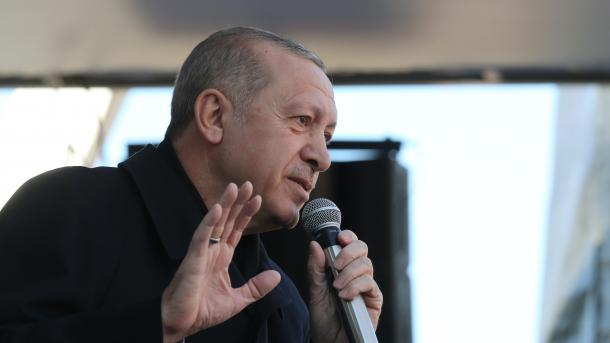 Эрдоган призвал Европу иСША поддержать усилия Турции вСирии