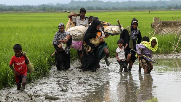 IOM: 800 mijë myslimanë të Arakanit luftojnë për të mbijetuar në kampet e Bangladeshit   TRT  Shqip