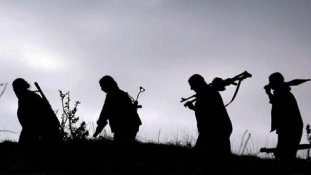 Terroristët e huaj të organizatës PKK/PYD-YPG | TRT  Shqip