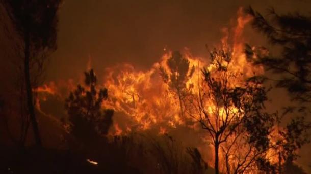 Miles de bomberos luchan contra incendios en Portugal