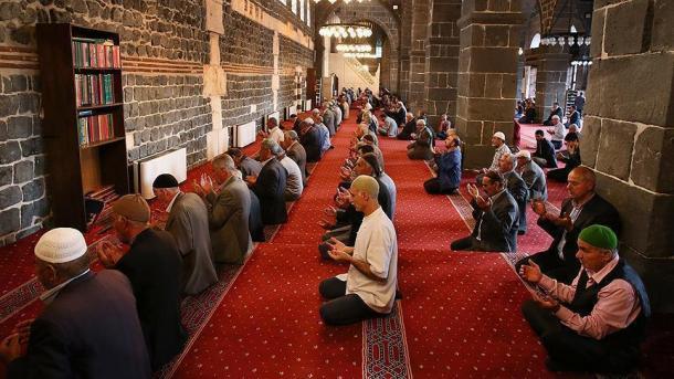 Nogayşa 208: Miraş'tıñ meyvaları em paydaları ne bolgan? (4) | TRT  Tatarça