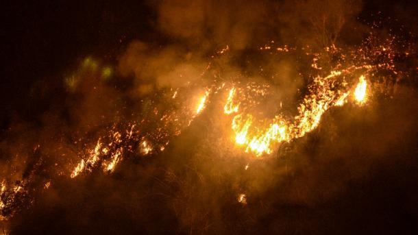 Bomberos de Grecia luchan contra tres grandes incendios forestales