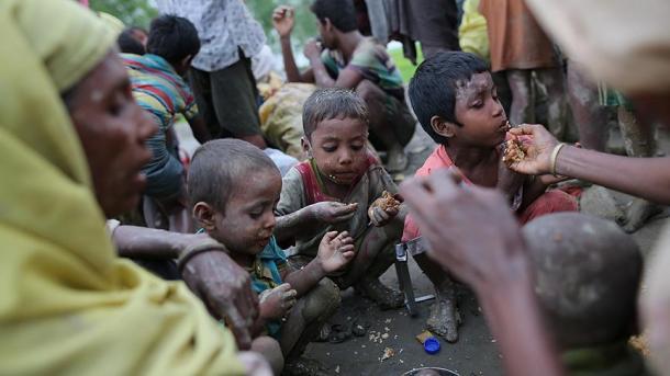 Deux réfugiés rohingyas tués par des éléphants — Bangladesh