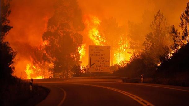 ポルトガルで森林火災、62人が死亡 | TRT  日本語