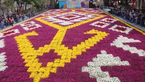 Najveći tepih od tulipana u svijetu