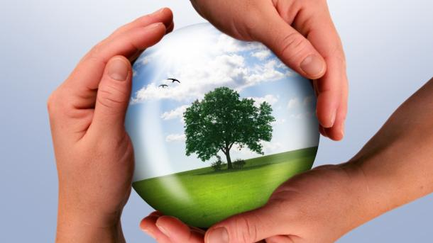 Colombia lidera celebración del Día Mundial del Medio Ambiente