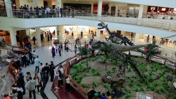 A e dini se në Ankara, kryeqytetin e Turqisë, ka një Muze të Historisë së Natyrës?   TRT  Shqip