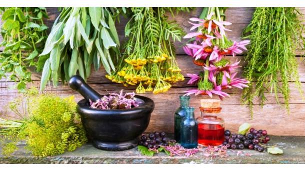 A e dini se Turqia është ndër vendet pararojë në kultivimin e bimëve mjekësore dhe aromatike? | TRT  Shqip