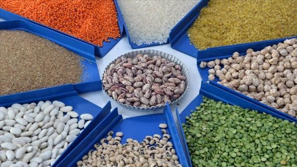 Turqi - Mbi 8 miliardë dollarë eksport të drithërave, bishtajoreve dhe farërave vajore | TRT  Shqip