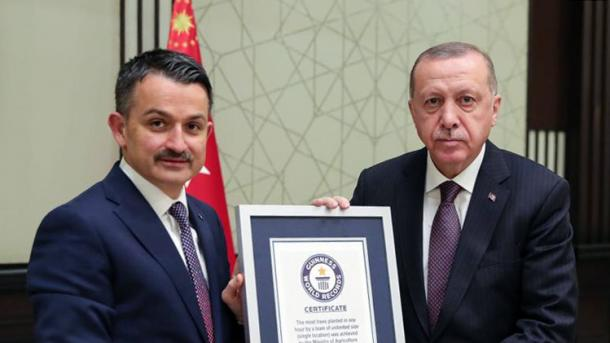 Le certificat de Record du monde de plantation d'arbres, remis au président Erdogan