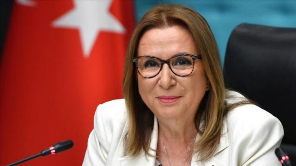 Turqia synon të rrisë tregtinë me Anglinë pas Brexit | TRT  Shqip