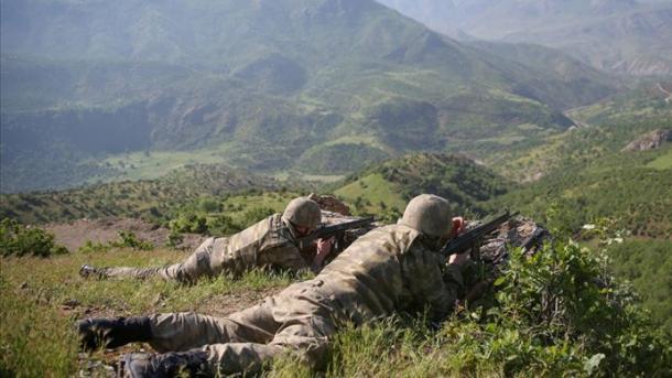 Forcat turke të sigurisë neutralizuan 2 terroristë të PKK-së në rrethin Siirt | TRT  Shqip