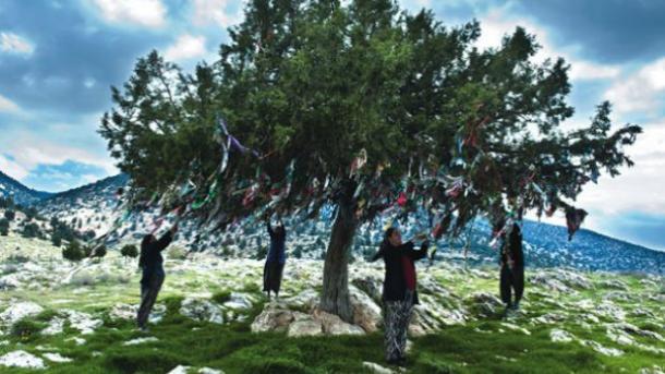 A e dini se festimi i Vitit të Ri është një traditë shumë e vjetër e turqve?   TRT  Shqip