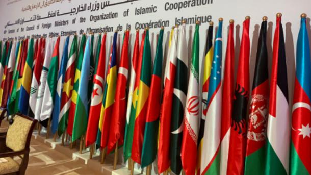 ٹی آر ٹی اردو - عالمی برادری فلسطینی عوام کے تحفظ کو یقینی بنائے: او آئی سی thumbnail