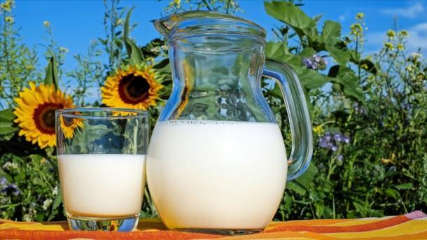 Turqia rriti eksportet e qumështit dhe produkteve të qumështit në tremujorin e parë | TRT  Shqip