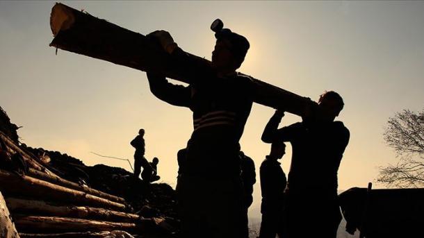ILO paralajmëron rritje të numrit të papunëve në 2020 | TRT  Shqip
